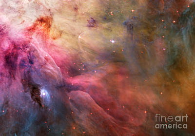 Photograph - Orion Nebula by Nasa