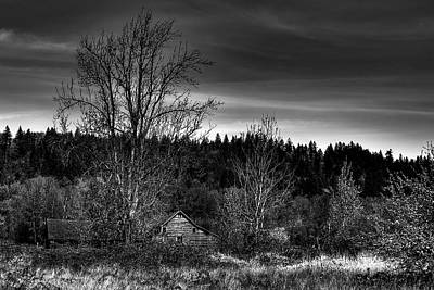 Tree Photograph - Orting Barn by David Patterson