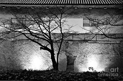Photograph - Osaka Castle Wall by Dean Harte