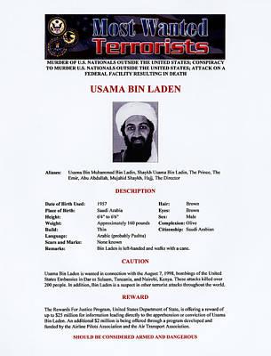 Osama Bin Laden Photograph - Osama Bin Laden, Militant Islamist by Everett