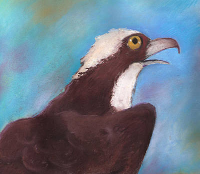 Osprey Art Print by Susan Herbst