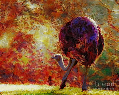 Ostrich II Art Print by Arne Hansen