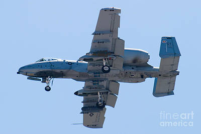 A-10a Thunderbolt Ii Photograph - Ot Af 80 0242 A-10 Thunderbolt II by Henry Plumley Jr