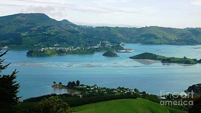 Otago Harbour Art Print by Therese Alcorn