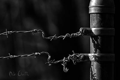 Barbwire Photograph - Other Side Of The Fence by Bob Orsillo