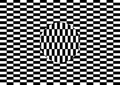 Illusory Photograph - Ouchi Illusion by