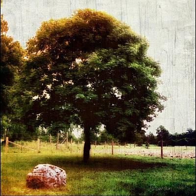 Out At The Farm. #atthefarm #farm #tree Art Print