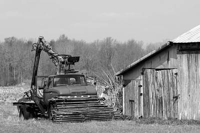 Photograph - Out To Pasture by Mark J Seefeldt