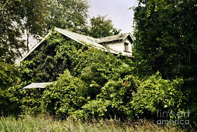 Abandoned Building Photograph - Overgrown House Five by Susan Isakson