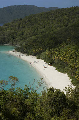 Overhead Of Trunk Bay Art Print by Margie Politzer