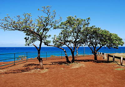Art Print featuring the photograph Overlook In Maui by Caroline Stella