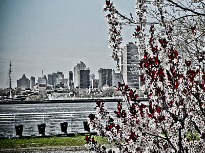Photograph - Overlooking Philly From Camden by Trish Tritz