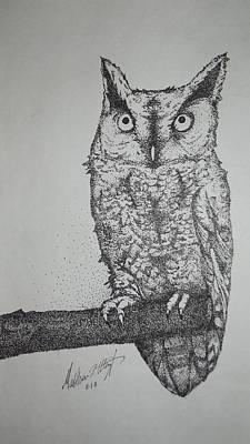 Stipple Owl Drawing - Owl by Matthew Wright