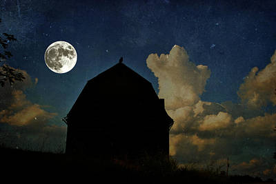 Photograph - Owl Moon by Emily Stauring