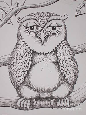 Drawing - Owl Sketch by Barbara Stirrup