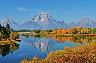 Oxbow Bend Reflections Art Print
