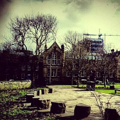 Classic Photograph - #oxfordroad #manchester #trees by Abdelrahman Alawwad