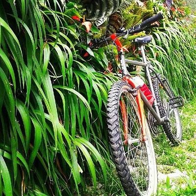 Mtb Photograph - Oxigenando La Bici by Gustavo Nieto