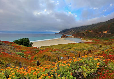 Pacific Coast Highway And Little Sur River Art Print