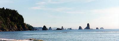 Photograph - Pacific Northwest by C Sitton