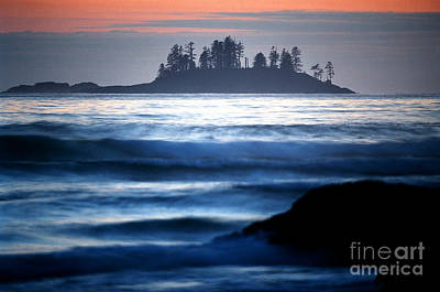 Photograph - Pacific Rim National Park 16 by Terry Elniski