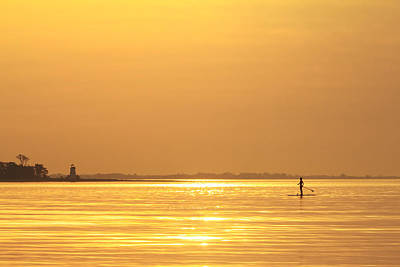 Athletes Royalty-Free and Rights-Managed Images - Paddle Boarder at Dawn by Stephanie McDowell