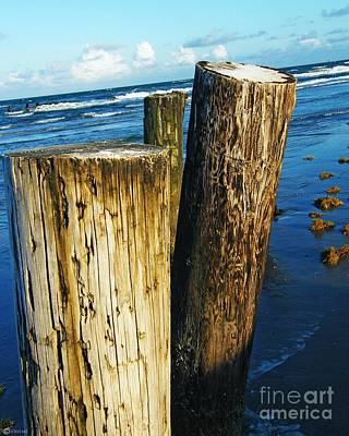 Photograph - Padres Island National Seashore Piers by Lizi Beard-Ward