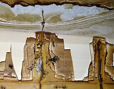 Paesina Stone Art Print by Dirk Wiersma