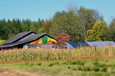 Photograph - Painted Barn by Chris Anderson