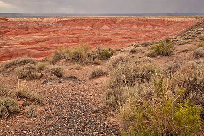 Photograph - Painted Desert 3 by Susan OBrien