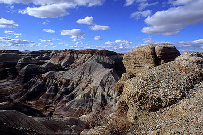 Photograph - Painted Desert Blue Sky by John Brink
