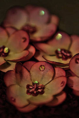 Photograph - Painted Flowers by Cherie Duran