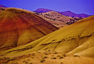 Photograph - Painted Hills Of Oregon by Dale Stillman