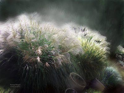 Painted Pampas Art Print by Carol Cavalaris