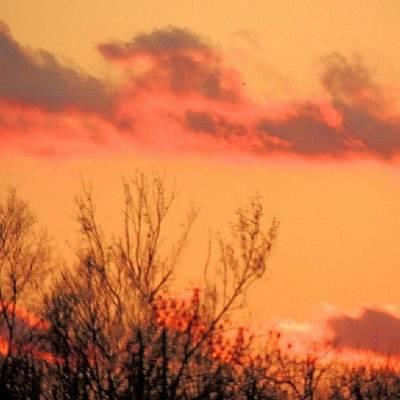 Sundown Wall Art - Photograph - Painted Sky by Kelli Stowe