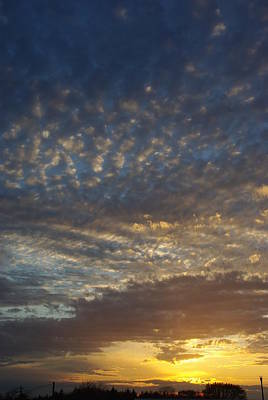 Photograph - Painted Sky by Robyn Stacey