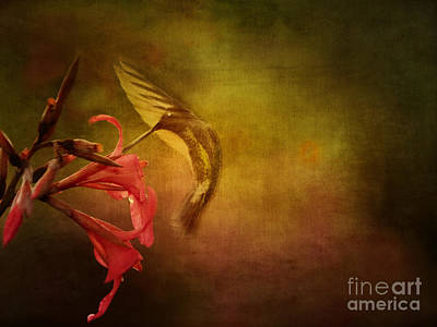 Art Print featuring the photograph Painterly Ballet by Anne Rodkin