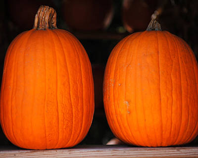 Photograph - Pair Of Pumpkins by Jai Johnson