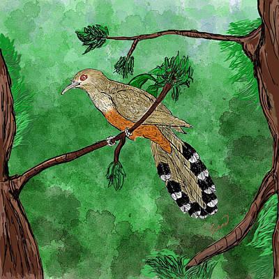 Cuckoo Digital Art - Pajaro Bobo Mayor Puerto Rican Lizard Cuckoo by Yiries Saad