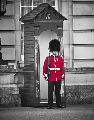 Photograph - Palace Guard by Mickey Clausen