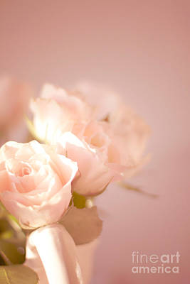 Photograph - Pale Cream Roses In Jug by Ethiriel  Photography