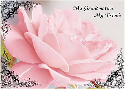 Photograph - Pale Pink Rose Greeting Card Grandmother by Debbie Portwood