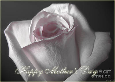 Photograph - Pale Pink Rose Greeting Card  Mother's Day by Debbie Portwood