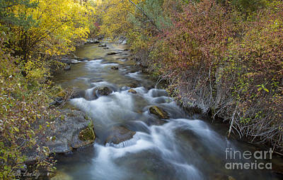 Photograph - Palisades Autumn by Idaho Scenic Images Linda Lantzy