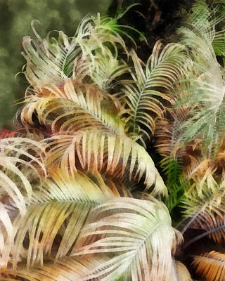 Digital Art - Palm Bank by Francesa Miller