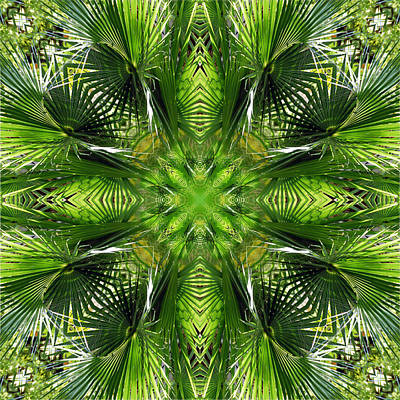 Digital Art - Palm Frond Kaleidoscope 2 by Francesa Miller