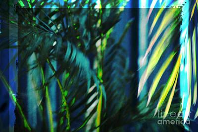 Avantgarde Photograph - Palm Fronds 3 by Susanne Van Hulst