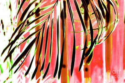 Palm Fronds 4 Art Print