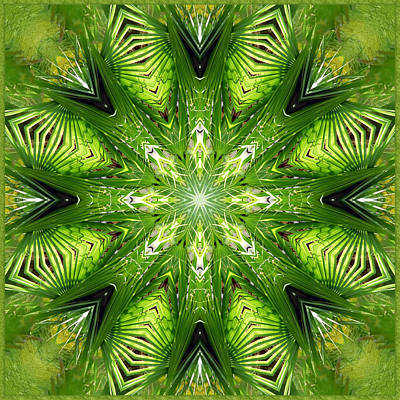Digital Art - Palm Kaleidoscope 11 by Francesa Miller