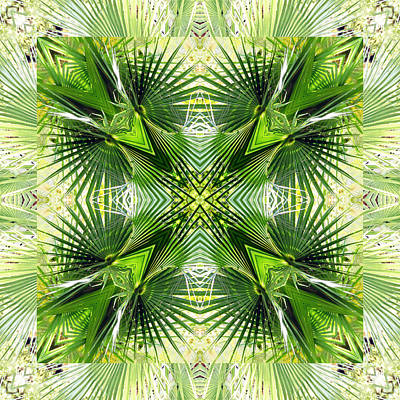 Digital Art - Palm Kaleidoscope 6 by Francesa Miller